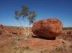 A Rock & A Tree