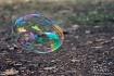 Bubble Beautiful