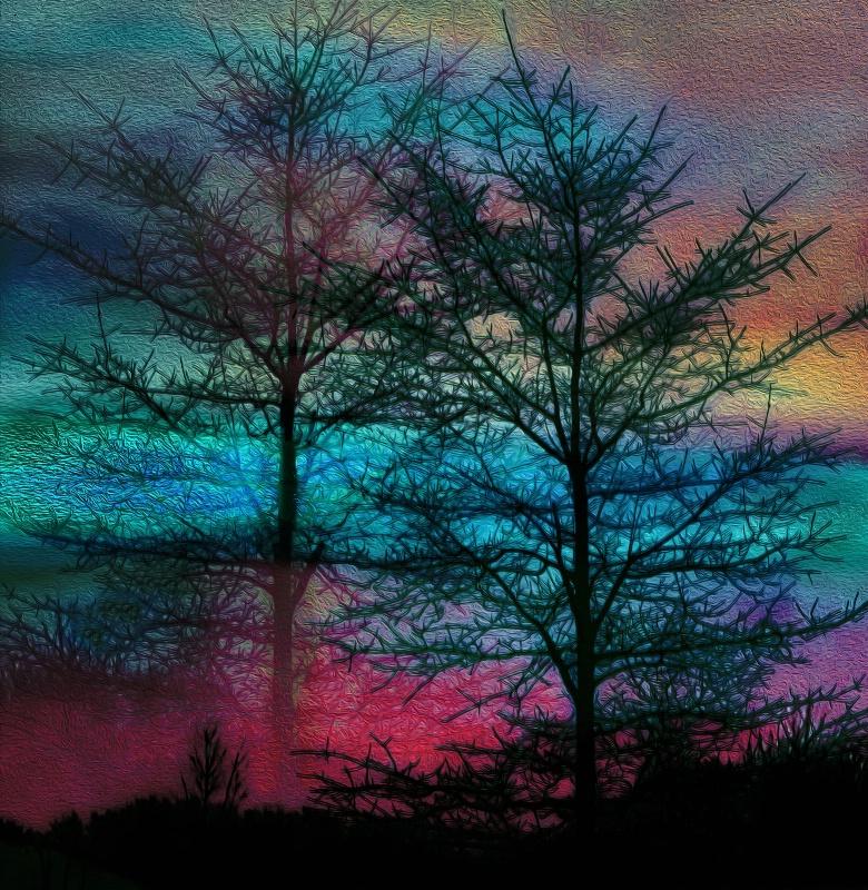 Tie-Dyed Trees
