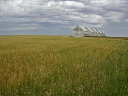 Alberta Granaries