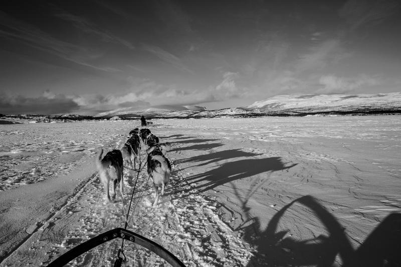 Nordic Journey - ID: 15095453 © Ilir Dugolli