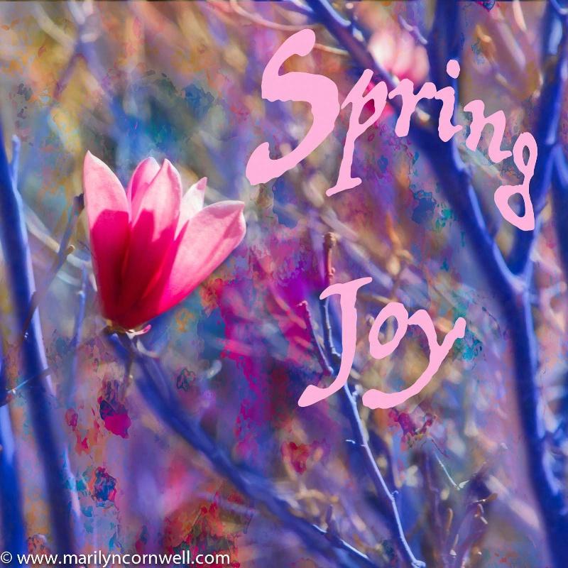 Spring Joy - ID: 15099381 © Marilyn Cornwell