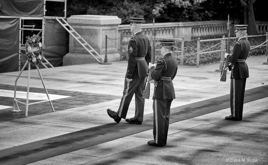 Changing of the Guard - ID: 15108464 © Dana M. Scott