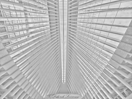 Transit Hub Ceiling