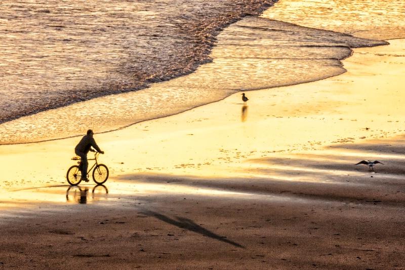 Morning Ride 2510 - ID: 15111849 © Karen Celella