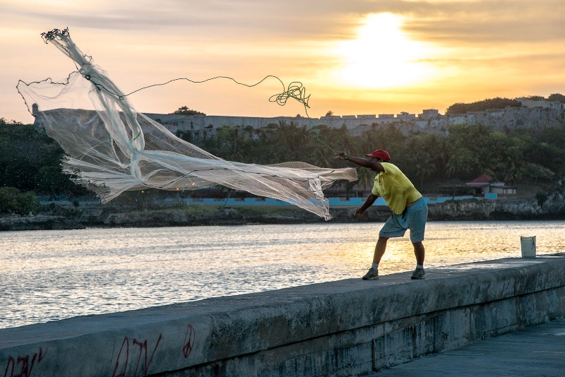 Casting a Net - ID: 15112151 © Kelly Pape
