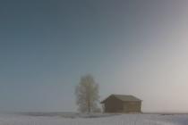 Small Barn On A Misty Field