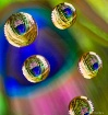 Feather Bubbles