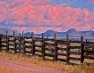 Fences Fences Fen...