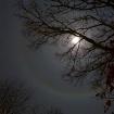 Christmas Moon wi...