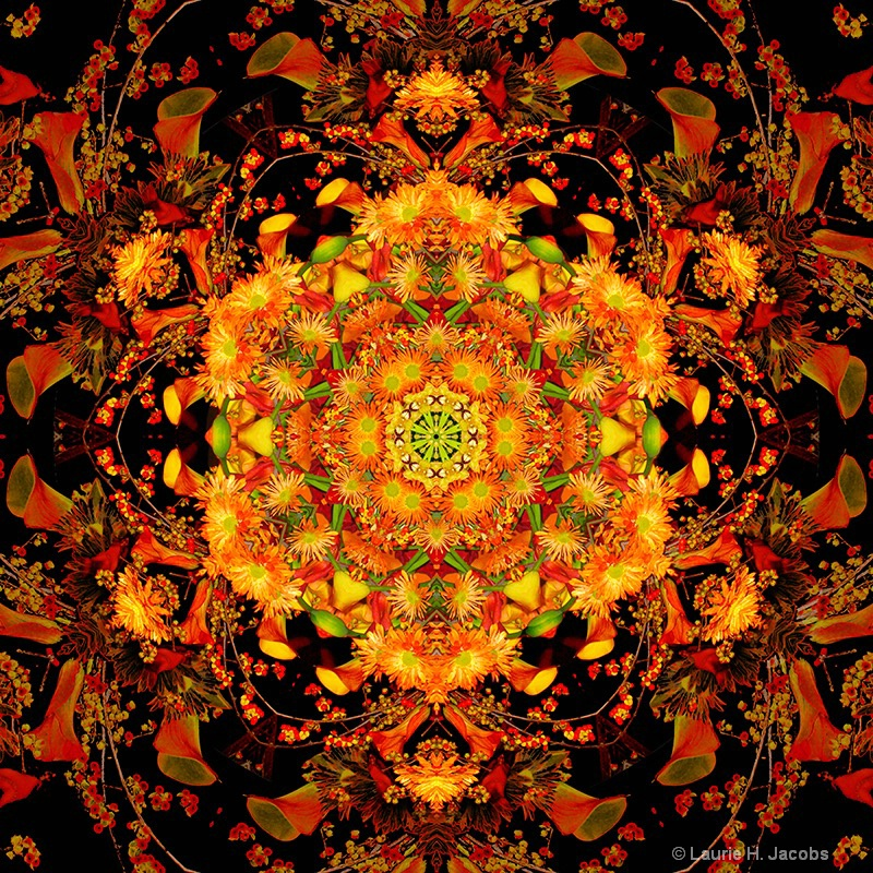Kaleidoscope #4 - ID: 15118909 © Laurie H. Jacobs