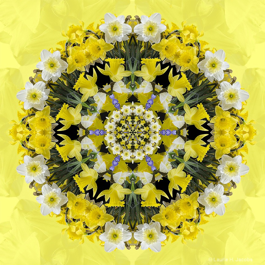 Kaleidoscope #32 - ID: 15118984 © Laurie H. Jacobs