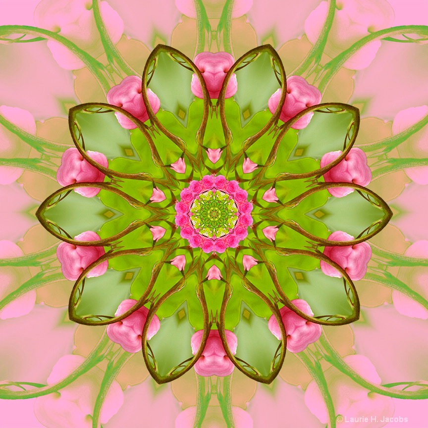 Kaleidoscope #5 - ID: 15119001 © Laurie H. Jacobs