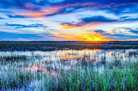 Sunset in the Southern Everglades.