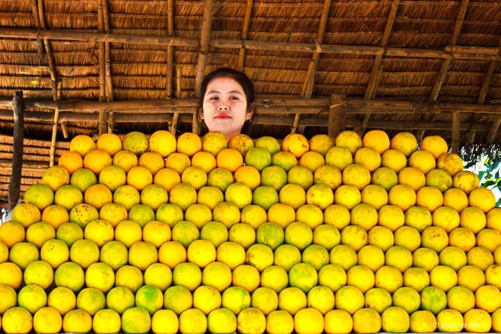 fruit seller - ID: 15129159 © wunna win