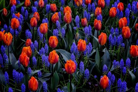 Dozens of Reasons to Love Springtime