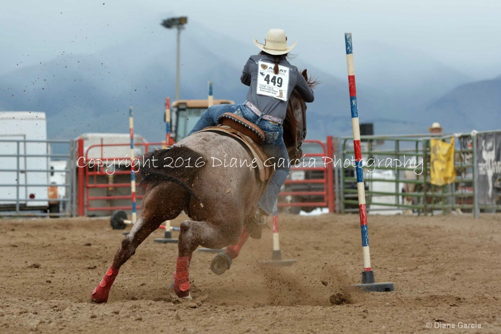 Kenleigh Iverson UHS T16 6.JPG - ID: 15134109 © Diane Garcia