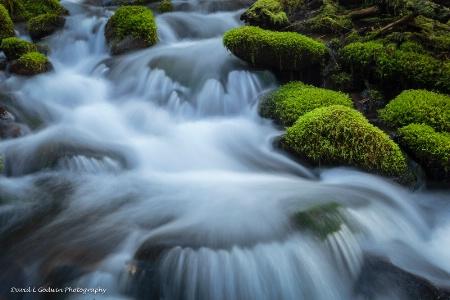 Sol Duc Creek 1