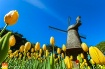 Spring Dutch Gard...