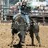 © Diane Garcia PhotoID # 15142851: UHS Rodeo SF16 Bulls 2.JPG