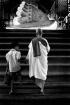 Towards Buddha Fo...