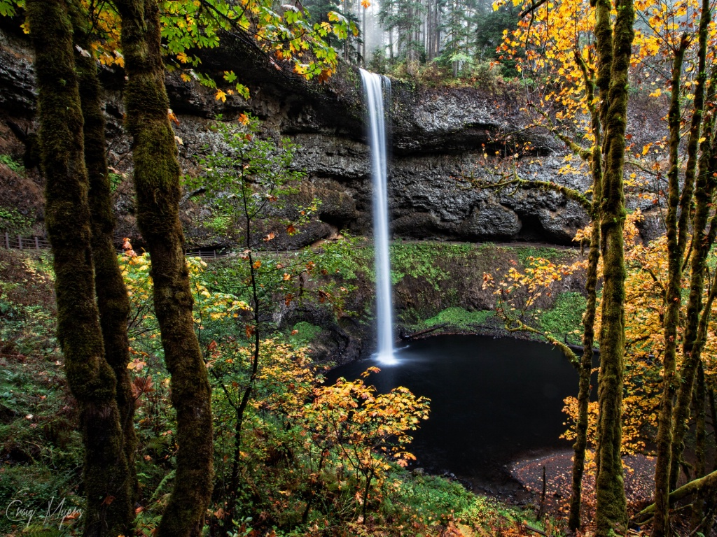 South Falls - ID: 15152018 © Craig W. Myers