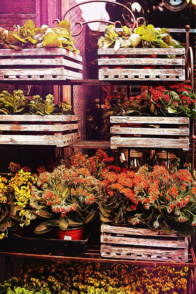 Crates of Flowers