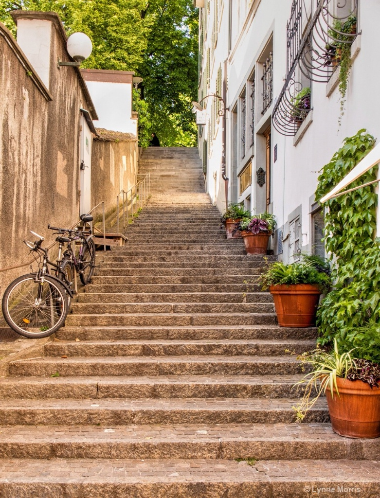 Steps and Bikes