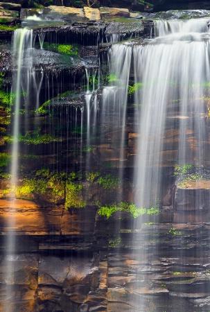 Portrait Of Christman Falls