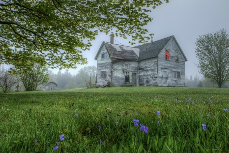 Abandoned in the Morning Mist