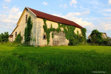 Old broken barn