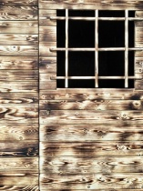 ~ ~ THE WINDOW ~ ~