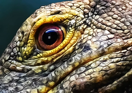 Eye Of The Gray's Monitor