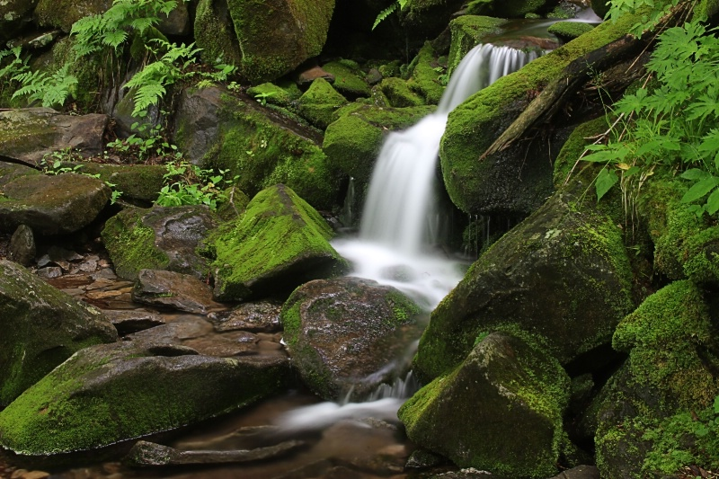 Little Mountain Falls