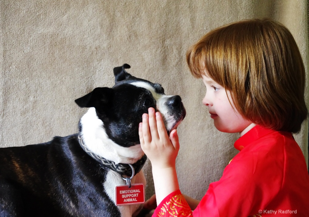 A Child's Love for Her Dog - ID: 15171356 © Kathy Radford