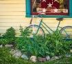 Bike and Window