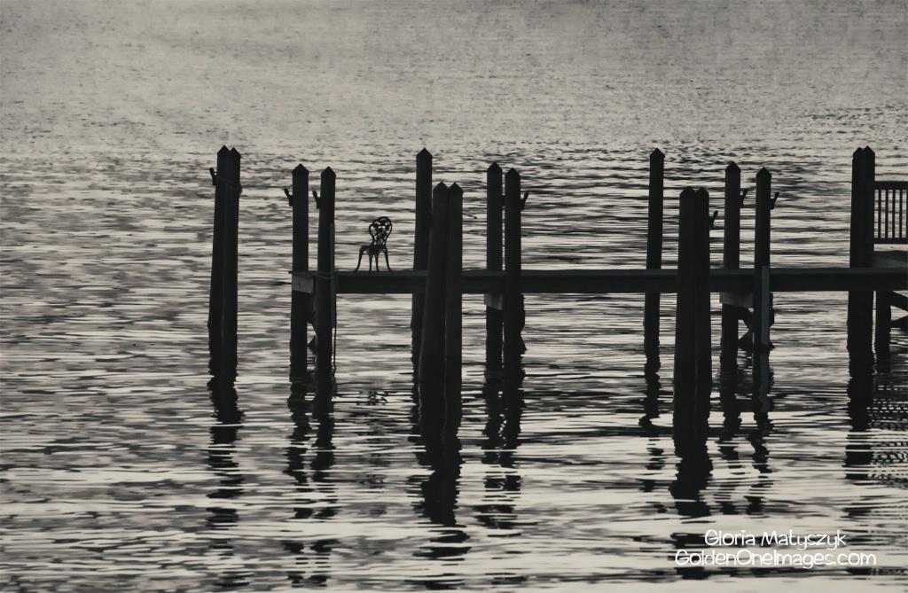 Dock Silhouette at Sunrise;  Treasure Island, FL