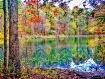 Beautiful fall in...