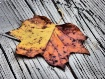 HDR Leaf