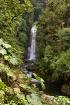 La Paz Waterfalls...
