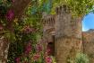 Castle Flowers in...