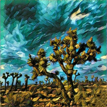 Filter Desert
