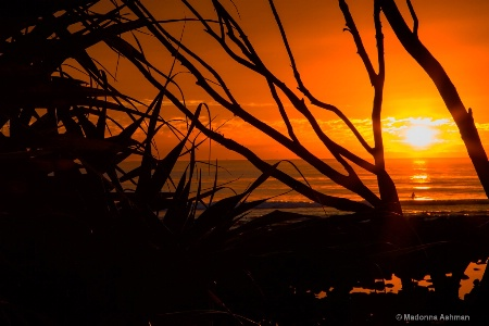 Sunrise-Silhouette
