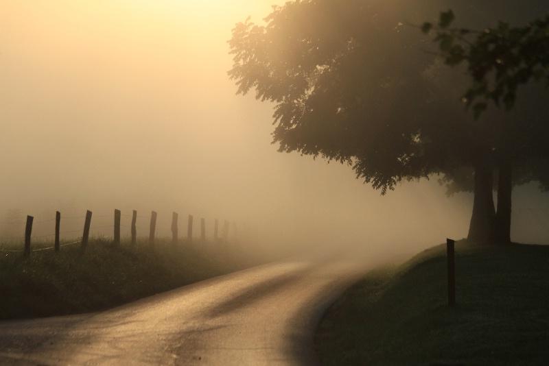 misty sun rise
