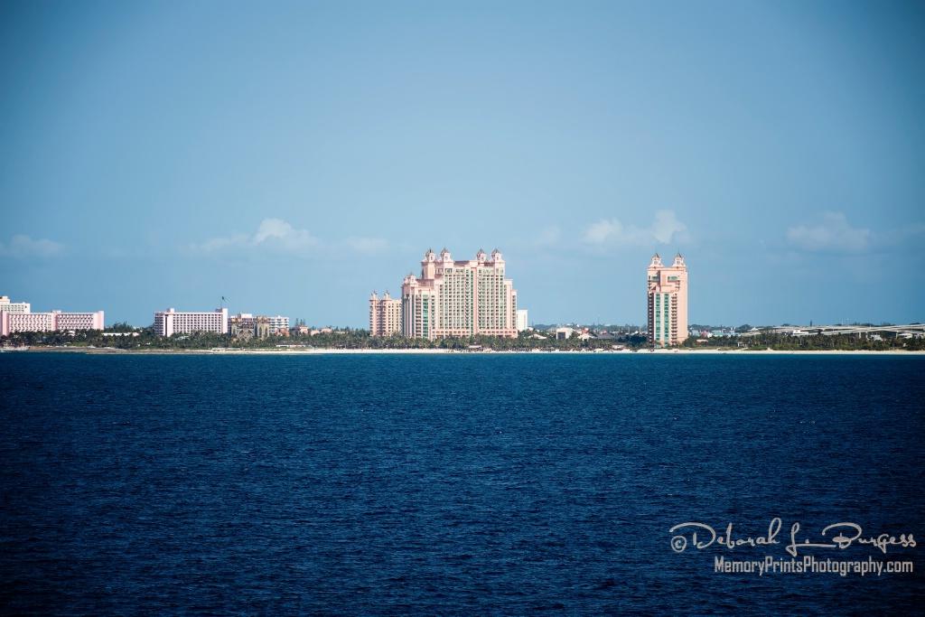 """""""Nassau"""" - ID: 15201927 © Deborah L. Burgess"""