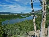 Yukon Wilderness