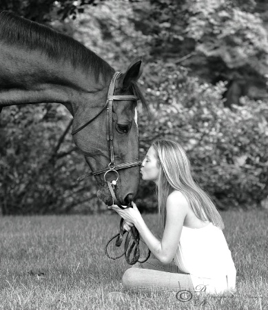 Horse & rider shoot