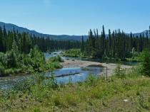 Wilderness Beauty