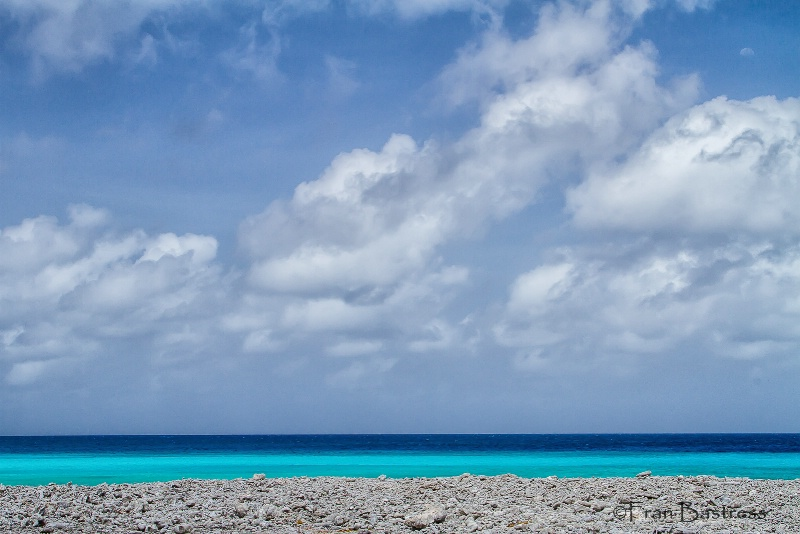 Bonaire - ID: 15212149 © Fran  Bastress