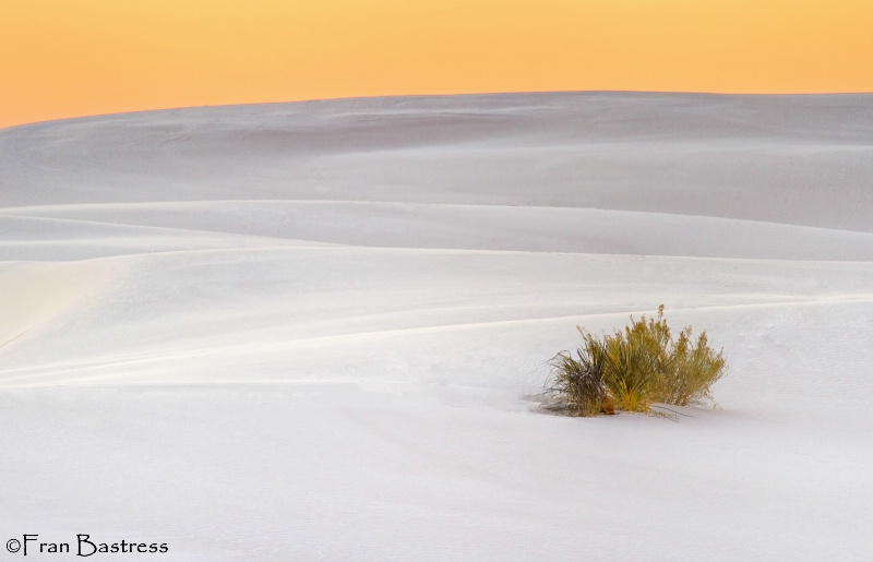 White Sands National Monument, NM - ID: 15215033 © Fran  Bastress